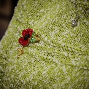 Poppy Broach on green jumper