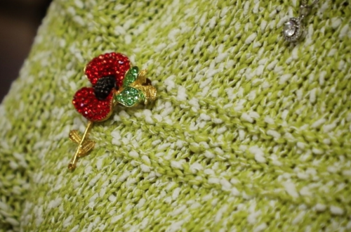 Poppy Broach on green jumper